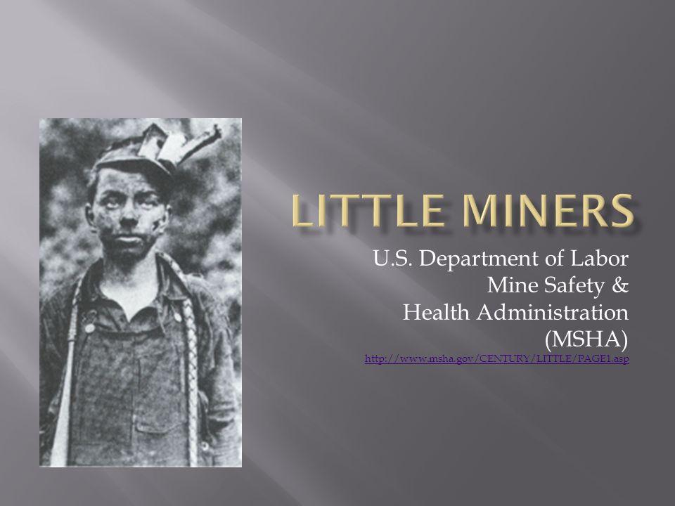 U.S. Department of Labor Mine Safety & Health Administration (MSHA) http://www.msha.gov/CENTURY/LITTLE/PAGE1.asp