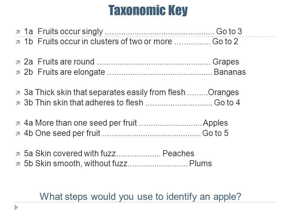 Taxonomic Key 1a Fruits occur singly................................................. Go to 3 1b Fruits occur in clusters of two or more..............