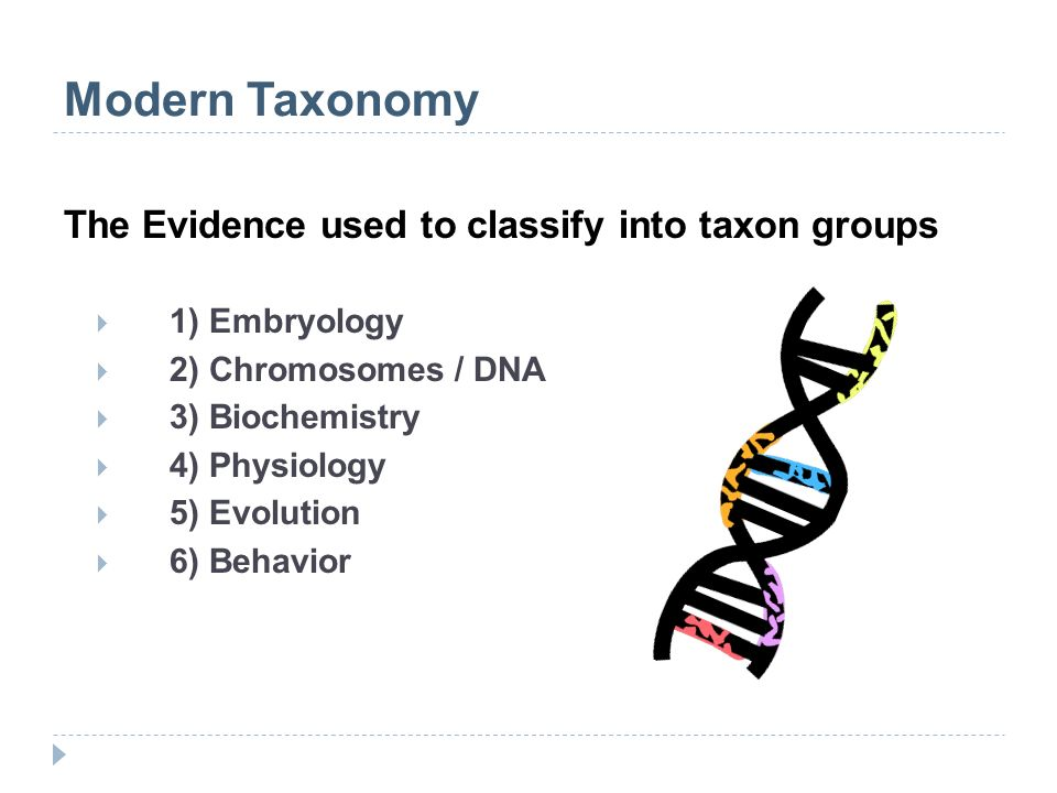 Modern Taxonomy The Evidence used to classify into taxon groups 1) Embryology 2) Chromosomes / DNA 3) Biochemistry 4) Physiology 5) Evolution 6) Behav