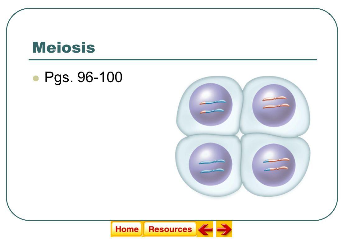 Meiosis Pgs. 96-100