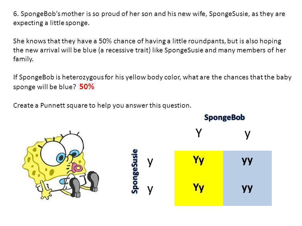 6. SpongeBobs mother is so proud of her son and his new wife, SpongeSusie, as they are expecting a little sponge. She knows that they have a 50% chanc