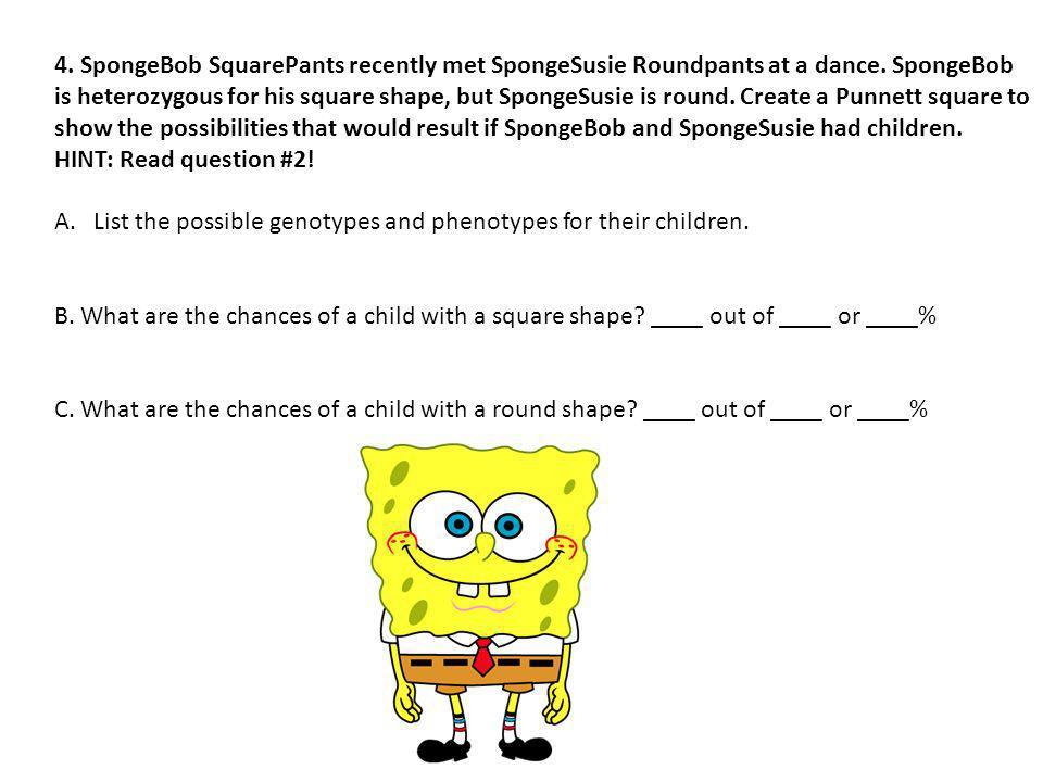 4. SpongeBob SquarePants recently met SpongeSusie Roundpants at a dance. SpongeBob is heterozygous for his square shape, but SpongeSusie is round. Cre