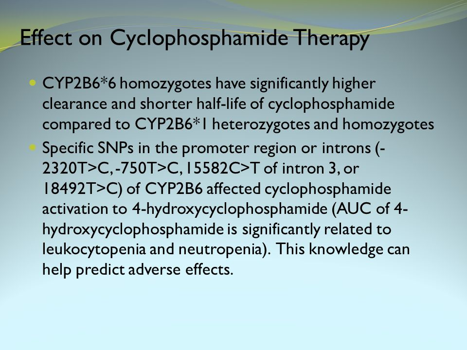 Effect on Cyclophosphamide Therapy CYP2B6*6 homozygotes have significantly higher clearance and shorter half-life of cyclophosphamide compared to CYP2