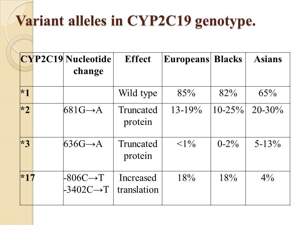 Variant alleles in CYP2C19 genotype. CYP2C19Nucleotide change EffectEuropeansBlacksAsians *1Wild type85%82%65% *2681GATruncated protein 13-19%10-25%20