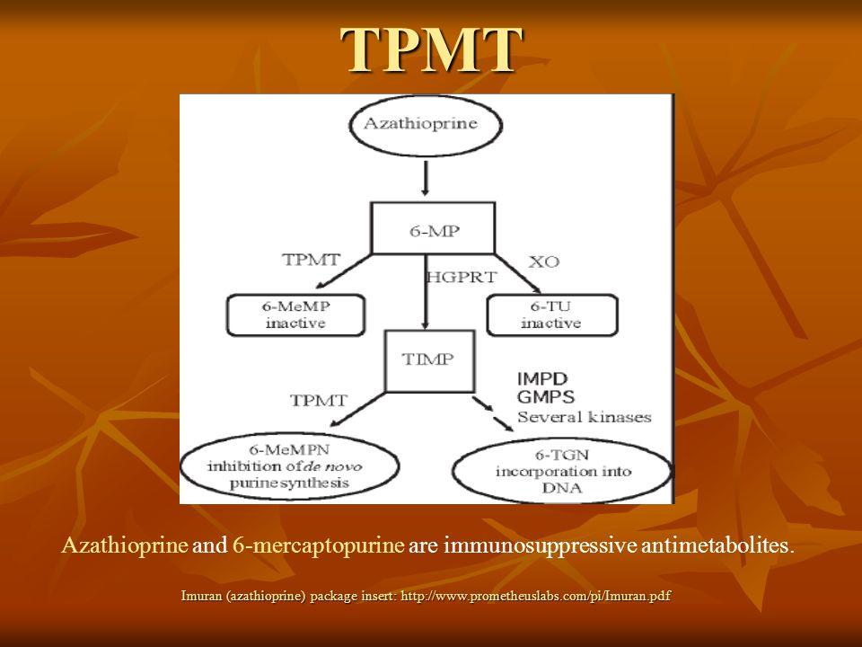 TPMT Azathioprine and 6-mercaptopurine are immunosuppressive antimetabolites. Imuran (azathioprine) package insert: http://www.prometheuslabs.com/pi/I
