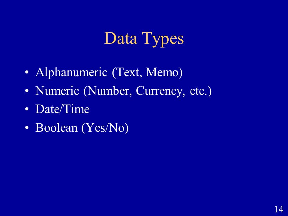14 Data Types Alphanumeric (Text, Memo) Numeric (Number, Currency, etc.) Date/Time Boolean (Yes/No)