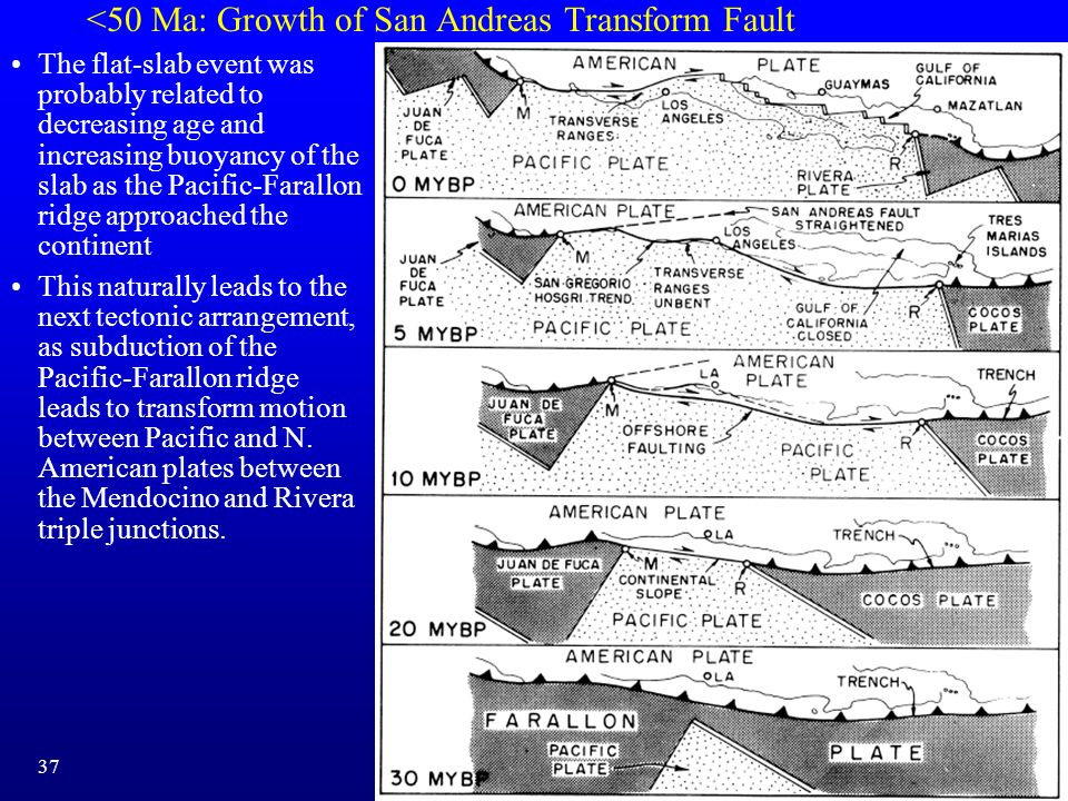 <50 Ma: Growth of San Andreas Transform Fault The flat-slab event was probably related to decreasing age and increasing buoyancy of the slab as the Pa