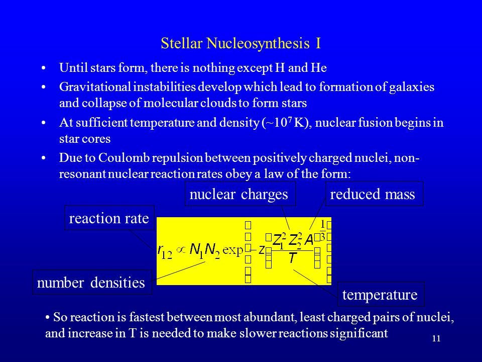 11 Stellar Nucleosynthesis I Until stars form, there is nothing except H and He Gravitational instabilities develop which lead to formation of galaxies and collapse of molecular clouds to form stars At sufficient temperature and density (~10 7 K), nuclear fusion begins in star cores Due to Coulomb repulsion between positively charged nuclei, non- resonant nuclear reaction rates obey a law of the form: reaction rate number densities nuclear chargesreduced mass temperature So reaction is fastest between most abundant, least charged pairs of nuclei, and increase in T is needed to make slower reactions significant