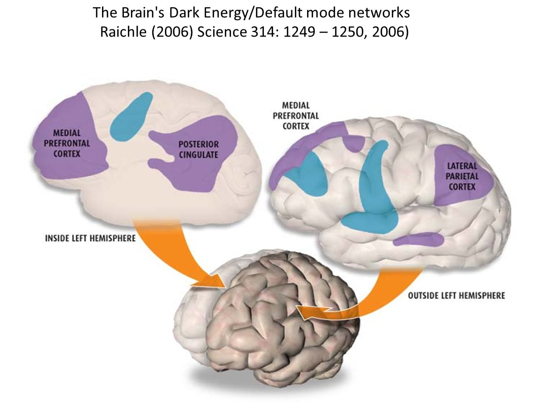 The Brain's Dark Energy/Default mode networks Raichle (2006) Science 314: 1249 – 1250, 2006)