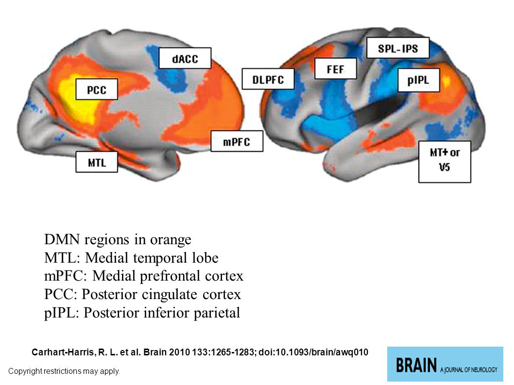 The brain operates in two distinct modes – 1) Attention-based sensory processing, task performance (Thalamo-cortical) 2) Mindwandering, episodic memory, internally-generated states daydreaming, thinking….