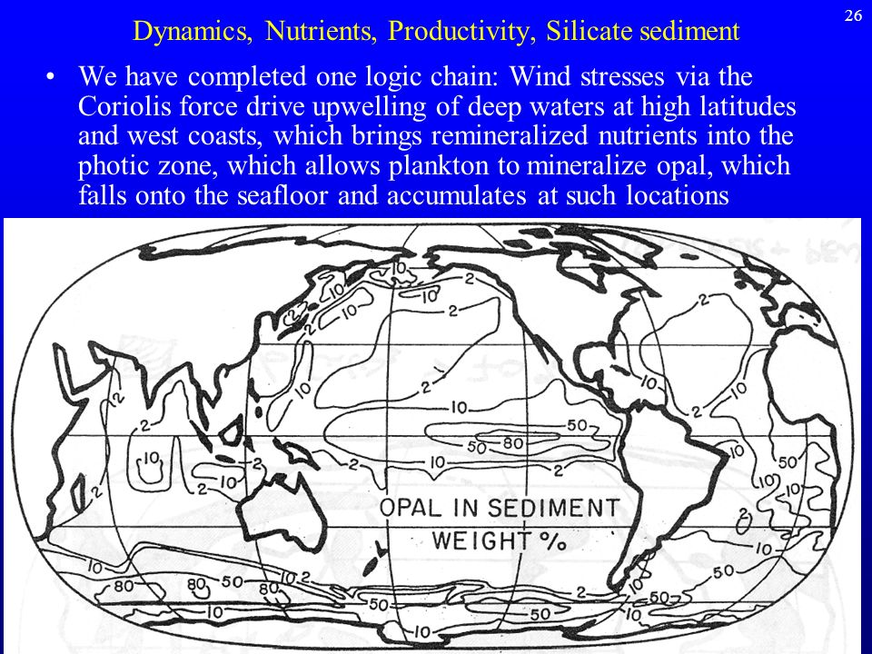 Dynamics, Nutrients, Productivity, Silicate sediment We have completed one logic chain: Wind stresses via the Coriolis force drive upwelling of deep w