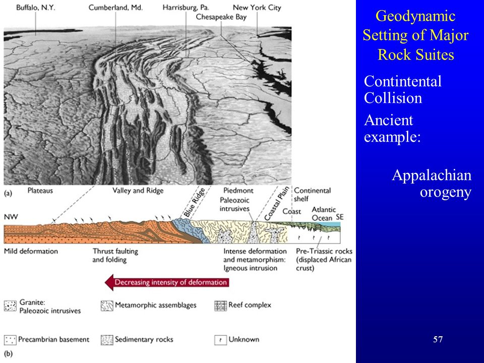 57 Geodynamic Setting of Major Rock Suites Contintental Collision Ancient example: Appalachian orogeny