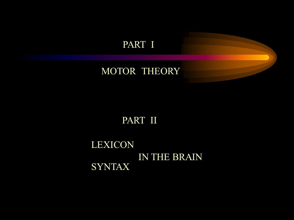 MOTOR BASIS OF SYNTAX COMPONENTS For each of the three components in syntax, the relation to the motor theory may take the form of: a relation directly with the organization of action -- the grammar of action -- or a relation directly with the organization of perception, the grammar of vision (Gregory).