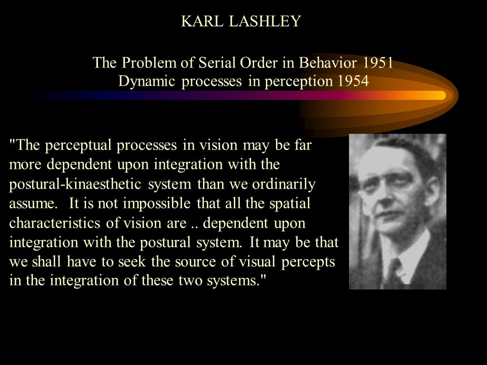 KARL LASHLEY The Problem of Serial Order in Behavior 1951 Dynamic processes in perception 1954