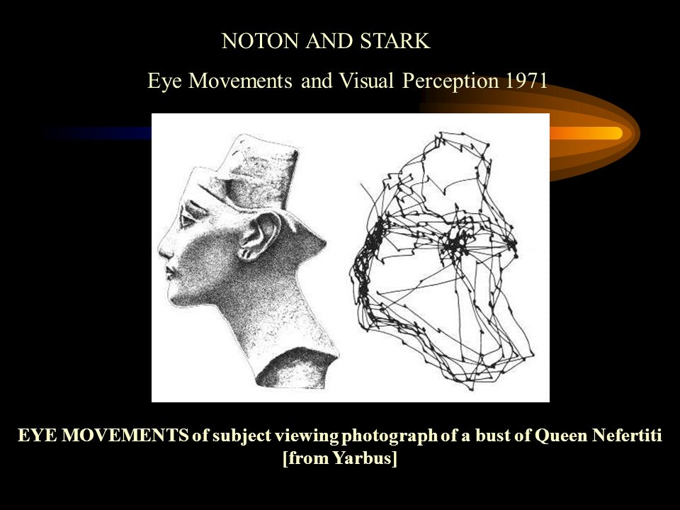 NOTON AND STARK Eye Movements and Visual Perception 1971 EYE MOVEMENTS of subject viewing photograph of a bust of Queen Nefertiti [from Yarbus]