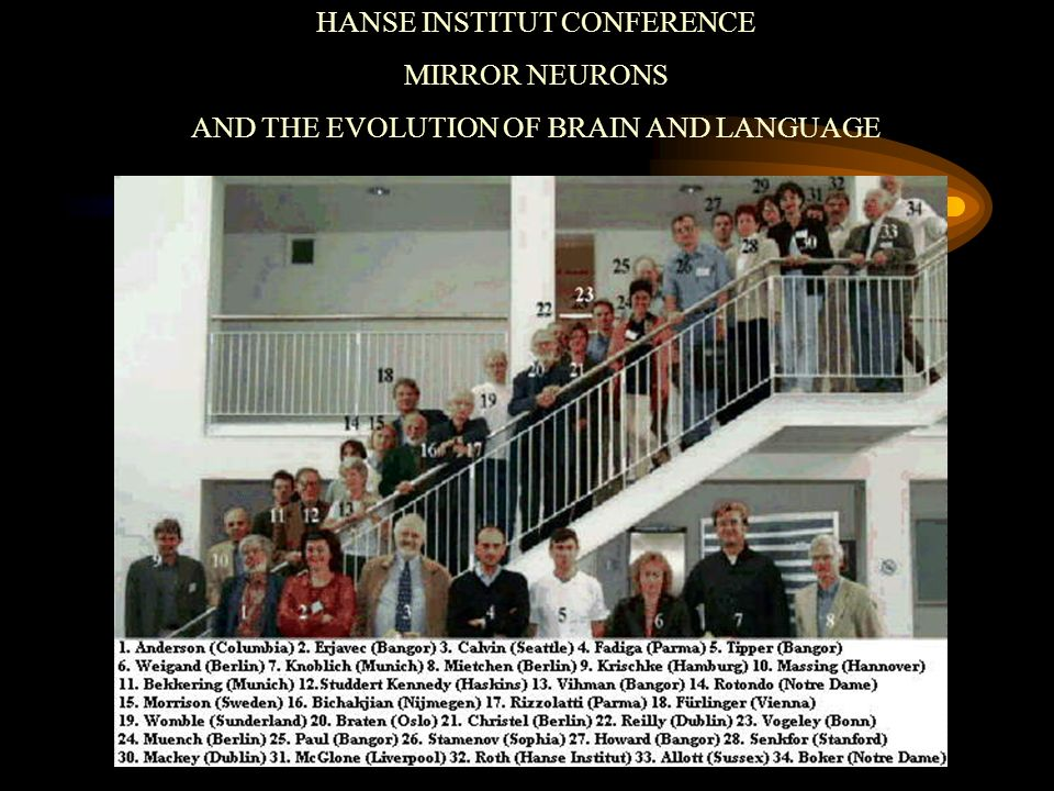 HANSE INSTITUT CONFERENCE MIRROR NEURONS AND THE EVOLUTION OF BRAIN AND LANGUAGE