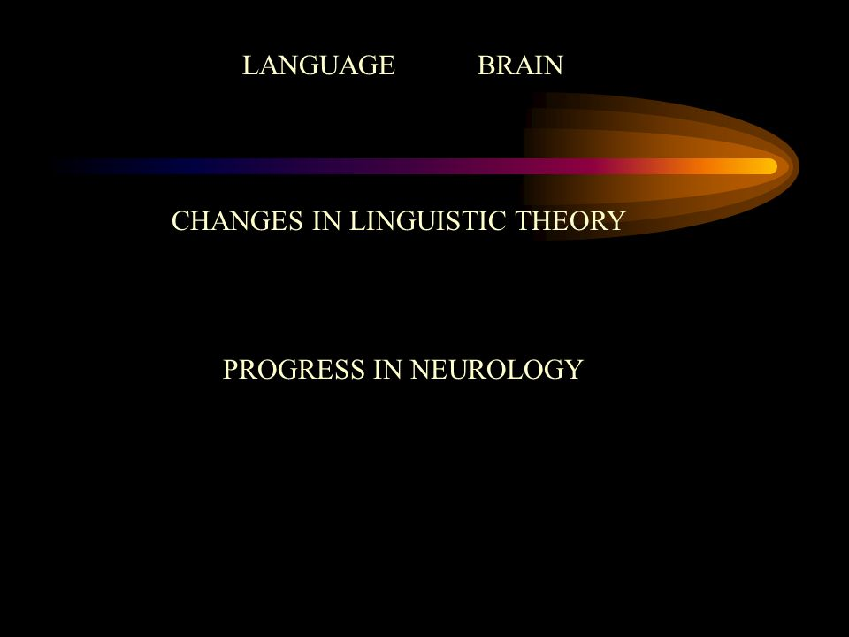 CHANGES IN LINGUISTIC THEORY PROGRESS IN NEUROLOGY LANGUAGE BRAIN