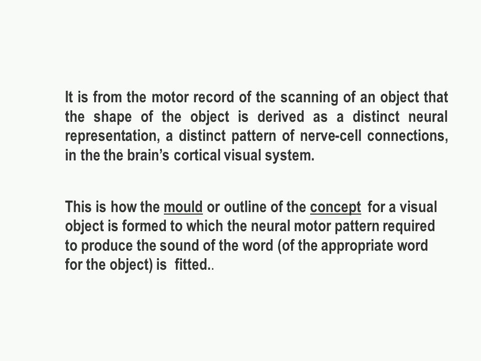 It is from the motor record of the scanning of an object that the shape of the object is derived as a distinct neural representation, a distinct pattern of nerve-cell connections, in the the brains cortical visual system.