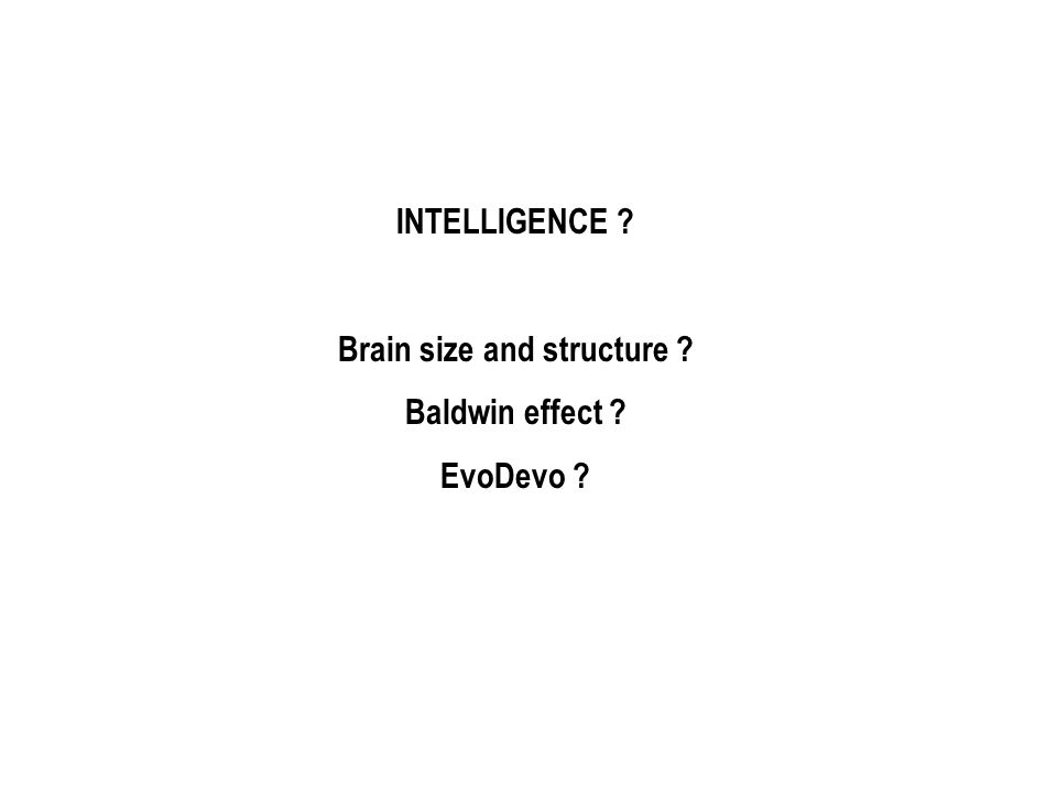 INTELLIGENCE ? Brain size and structure ? Baldwin effect ? EvoDevo ?