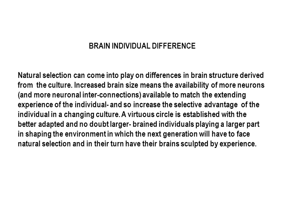 BRAIN INDIVIDUAL DIFFERENCE Natural selection can come into play on differences in brain structure derived from the culture. Increased brain size mean