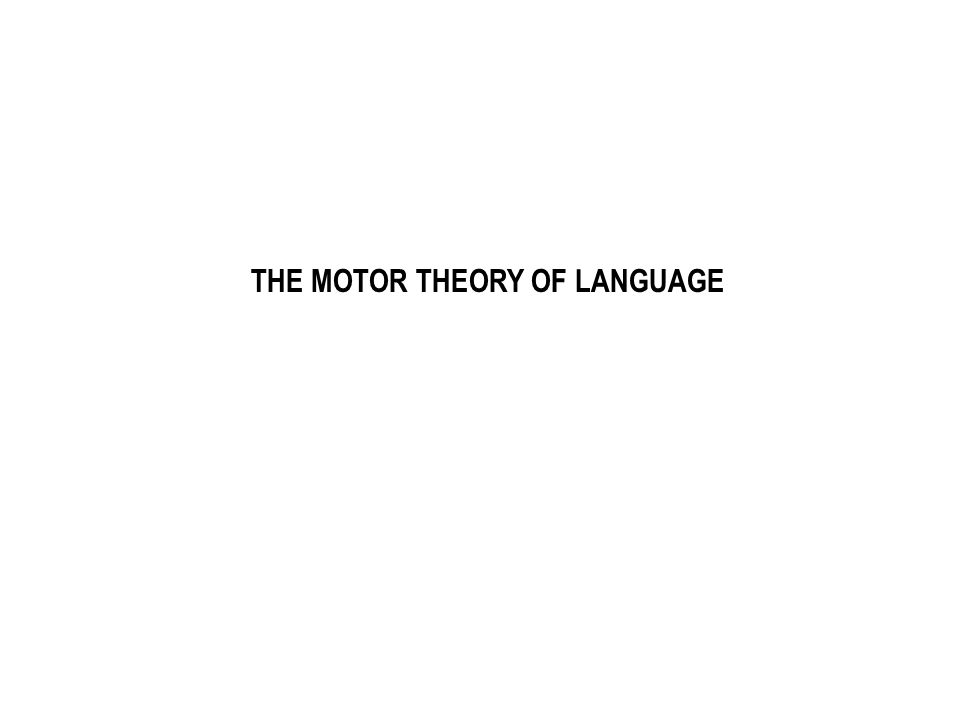 THE MOTOR THEORY OF LANGUAGE