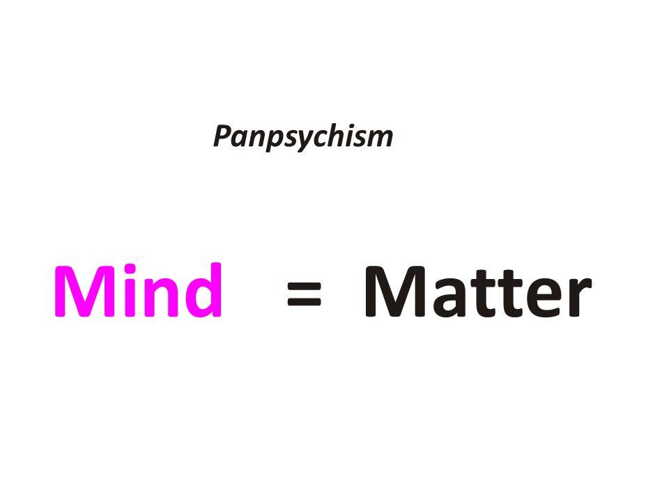 Mind= Matter Panpsychism