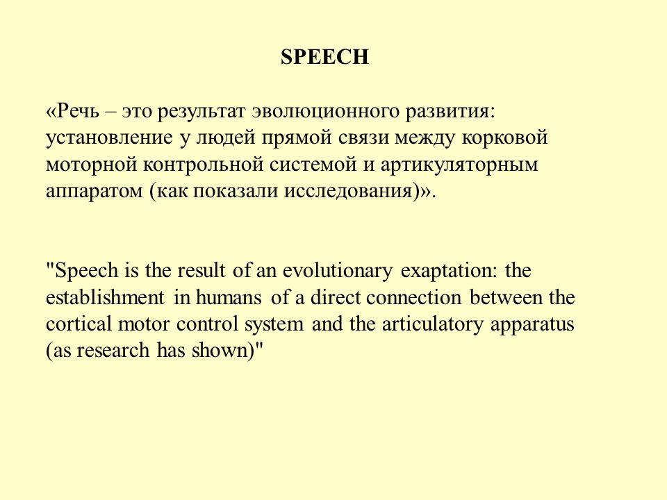 THE WORD «Слова – это естественный эволюционный продукт функционирования мозга.