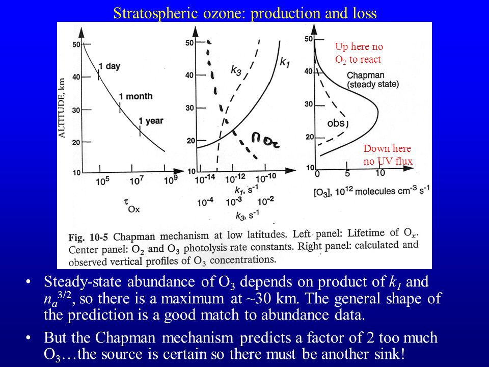 Stratospheric ozone: production and loss Steady-state abundance of O 3 depends on product of k 1 and n a 3/2, so there is a maximum at ~30 km. The gen