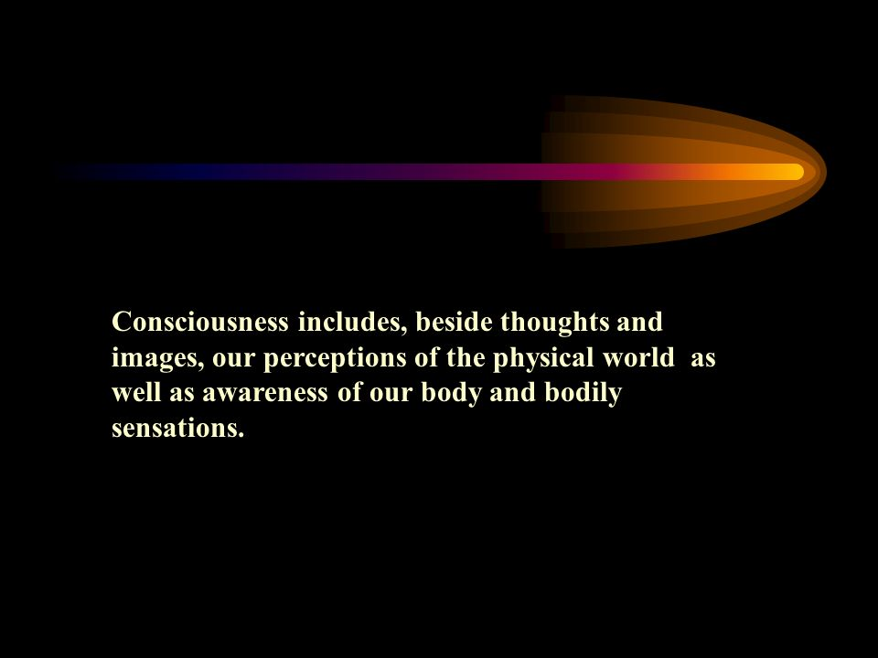 Consciousness includes, beside thoughts and images, our perceptions of the physical world as well as awareness of our body and bodily sensations.