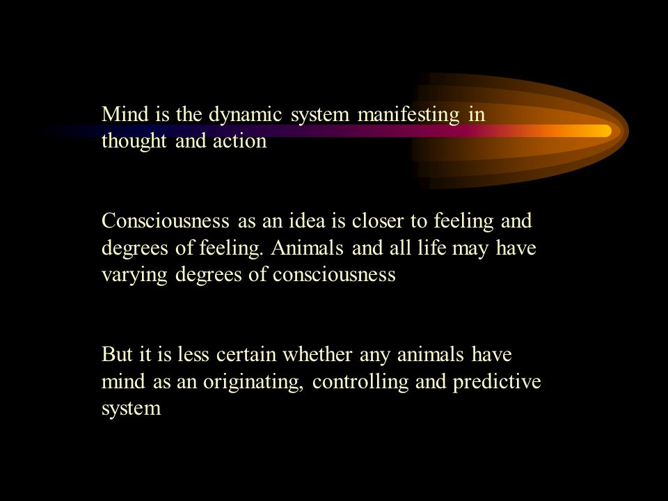 Mind is the dynamic system manifesting in thought and action Consciousness as an idea is closer to feeling and degrees of feeling. Animals and all lif