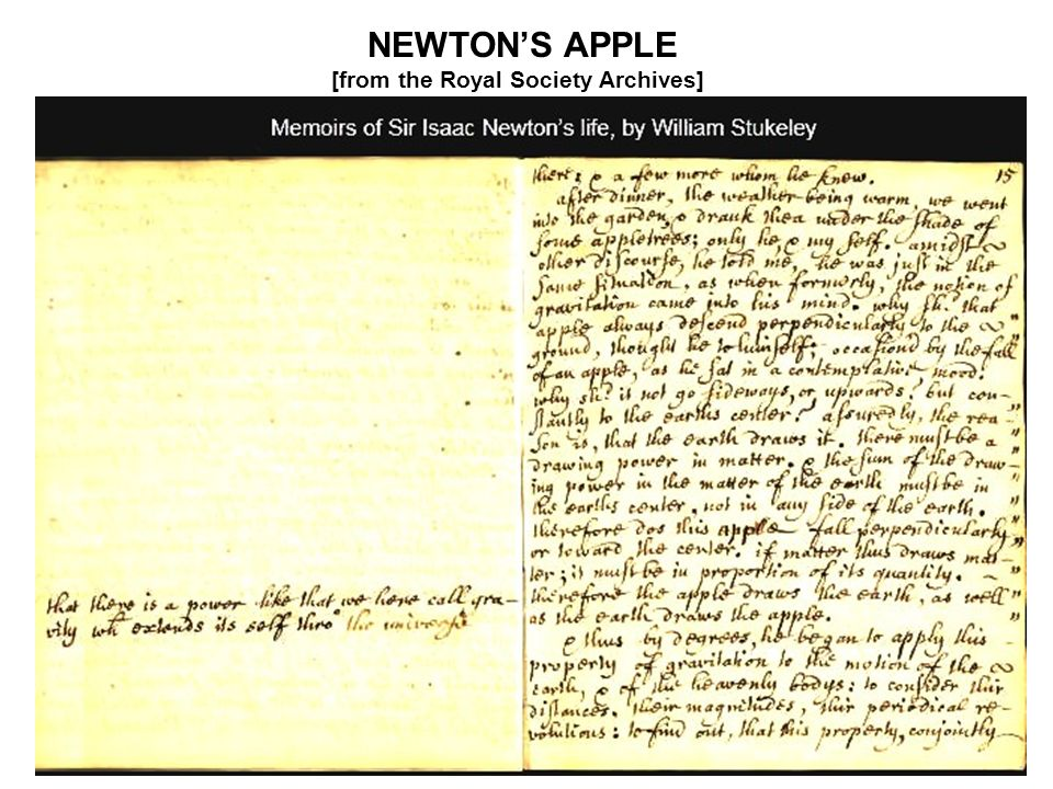 NEWTONS APPLE [from the Royal Society Archives]