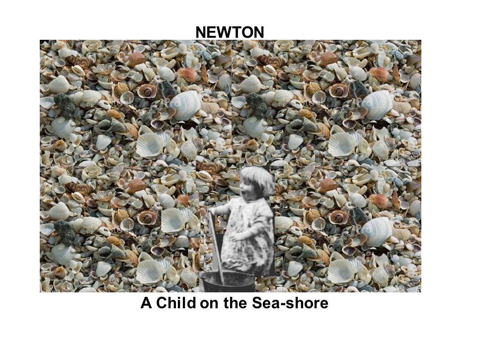 A Child on the Sea-shore NEWTON