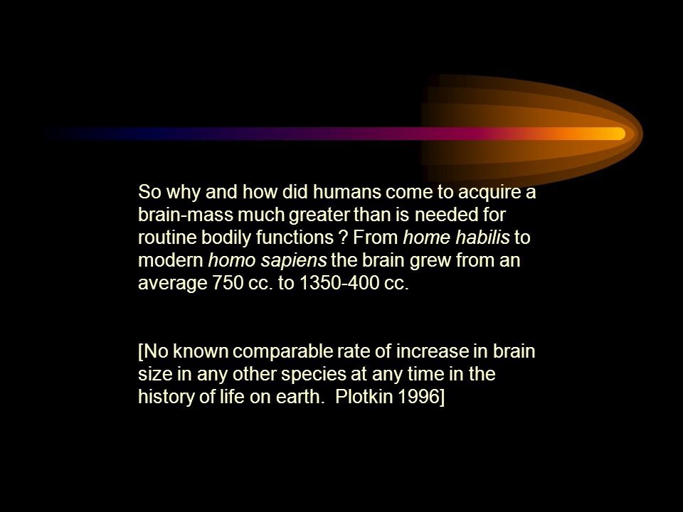 So why and how did humans come to acquire a brain-mass much greater than is needed for routine bodily functions .