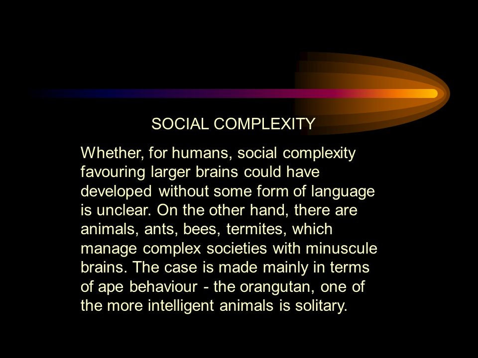 SOCIAL COMPLEXITY Whether, for humans, social complexity favouring larger brains could have developed without some form of language is unclear.