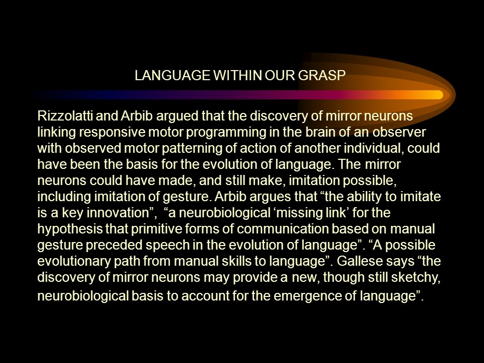 LANGUAGE WITHIN OUR GRASP Rizzolatti and Arbib argued that the discovery of mirror neurons linking responsive motor programming in the brain of an observer with observed motor patterning of action of another individual, could have been the basis for the evolution of language.