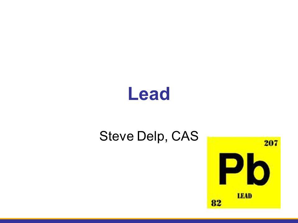 Lead Steve Delp, CAS
