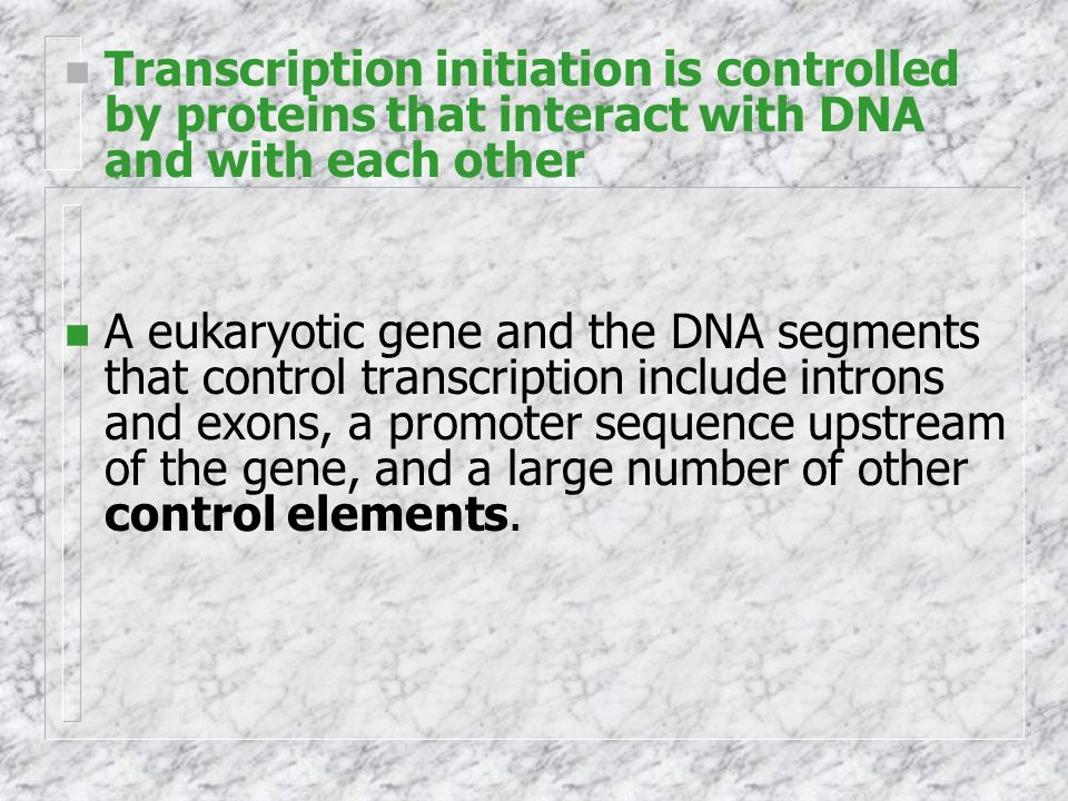 n Transcription initiation is controlled by proteins that interact with DNA and with each other n A eukaryotic gene and the DNA segments that control