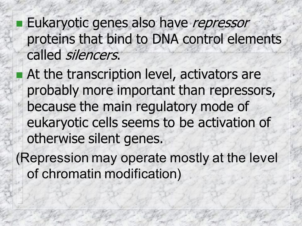 n Eukaryotic genes also have repressor proteins that bind to DNA control elements called silencers.