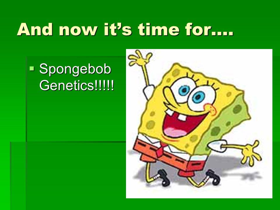 And now its time for…. Spongebob Genetics!!!!! Spongebob Genetics!!!!!