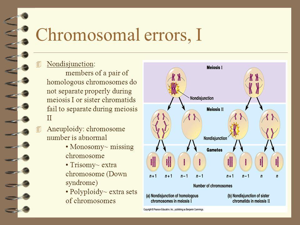 Chromosomal errors, I 4 Nondisjunction: members of a pair of homologous chromosomes do not separate properly during meiosis I or sister chromatids fai