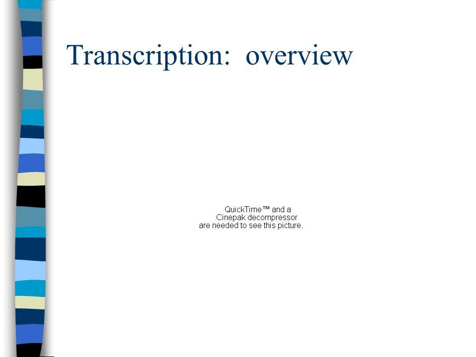 Transcription: overview