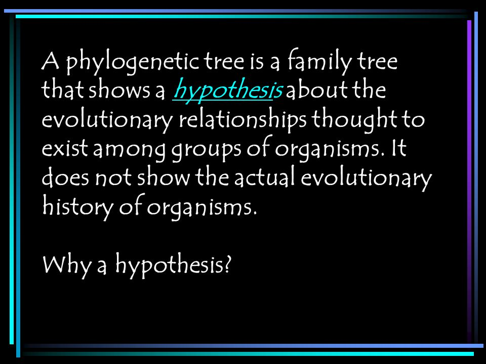 A phylogenetic tree is a family tree that shows a hypothesis about the evolutionary relationships thought to exist among groups of organisms. It does