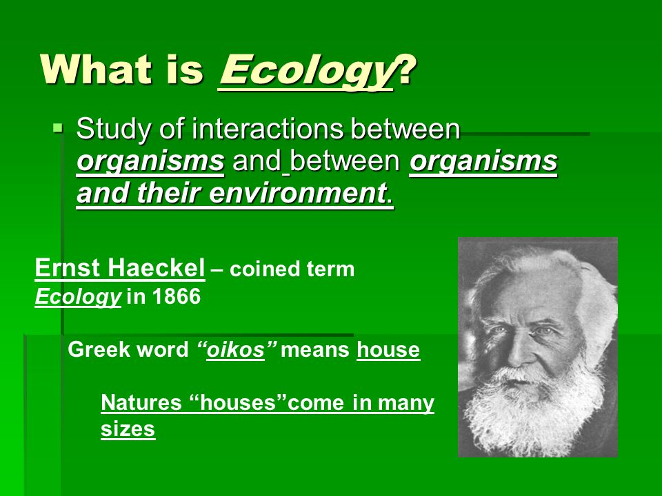 What is Ecology? Study of interactions between organisms and between organisms and their environment. Study of interactions between organisms and betw