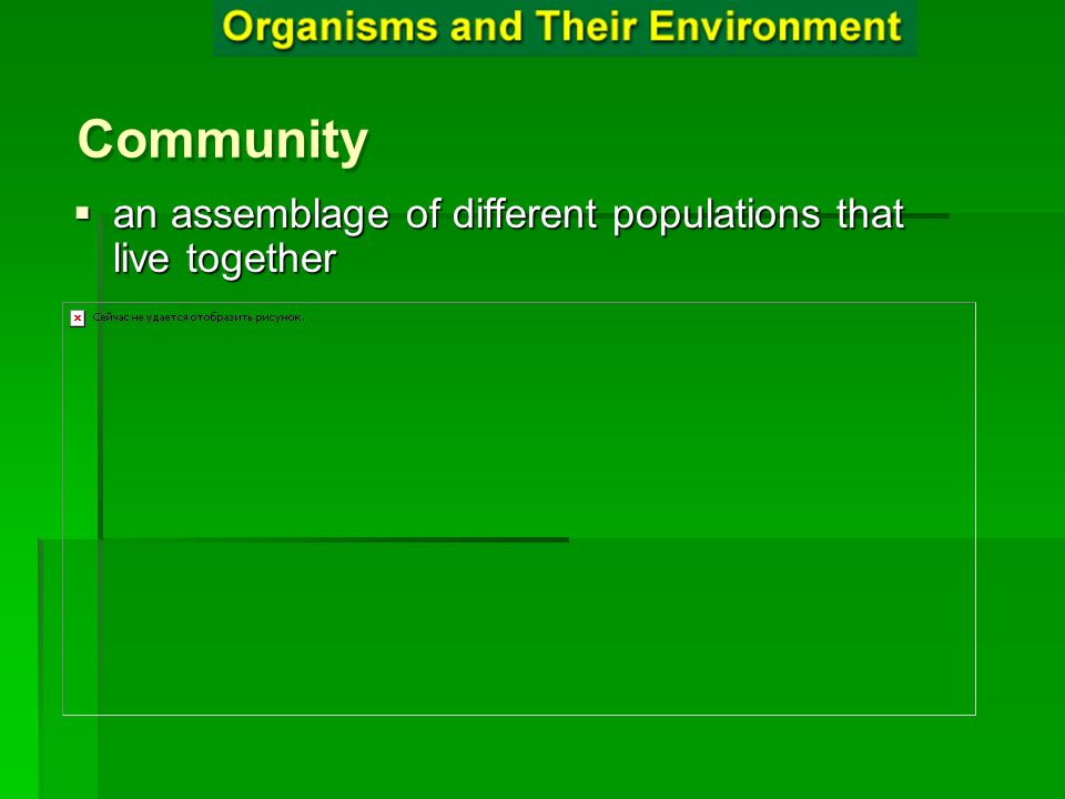 Community Community Community an assemblage of different populations that live together an assemblage of different populations that live together
