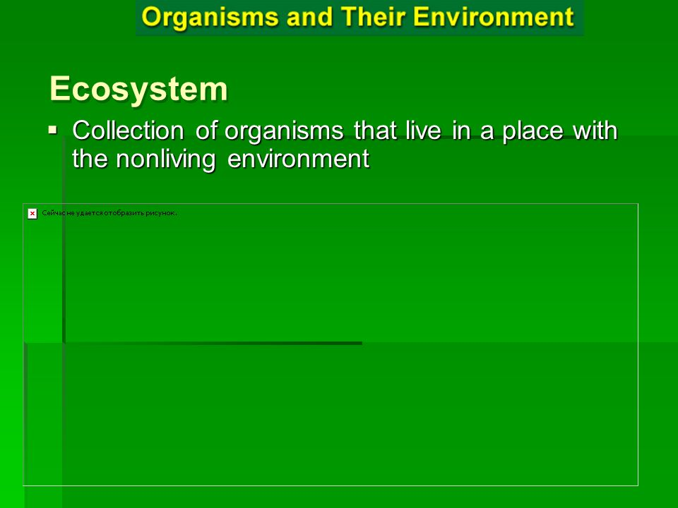 Ecosystem Ecosystem Collection of organisms that live in a place with the nonliving environment Collection of organisms that live in a place with the