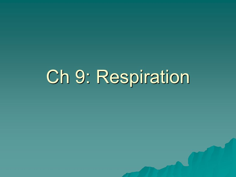The Big Picture Cellular respiration has the sole purpose to produce ATP.