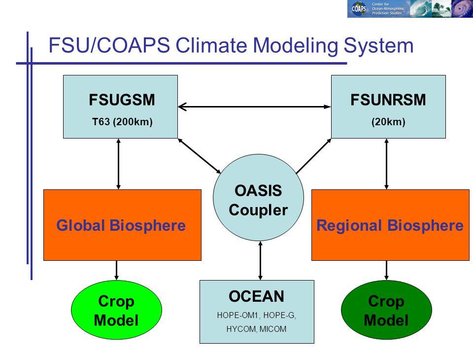 FSUNRSM (20km) OASIS Coupler FSU/COAPS Climate Modeling System Regional Biosphere FSUGSM T63 (200km) Global Biosphere OCEAN HOPE-OM1, HOPE-G, HYCOM, MICOM Crop Model
