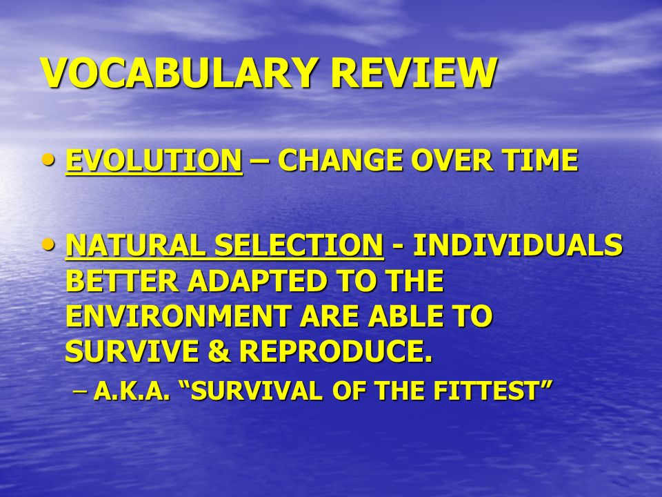 VOCABULARY REVIEW EVOLUTION – CHANGE OVER TIME EVOLUTION – CHANGE OVER TIME NATURAL SELECTION - INDIVIDUALS BETTER ADAPTED TO THE ENVIRONMENT ARE ABLE
