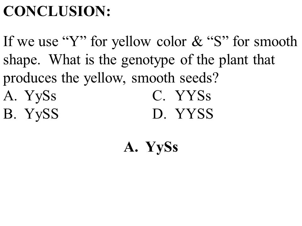 CONCLUSION: If we use Y for yellow color & S for smooth shape. What is the genotype of the plant that produces the yellow, smooth seeds? A.YySsC.YYSs