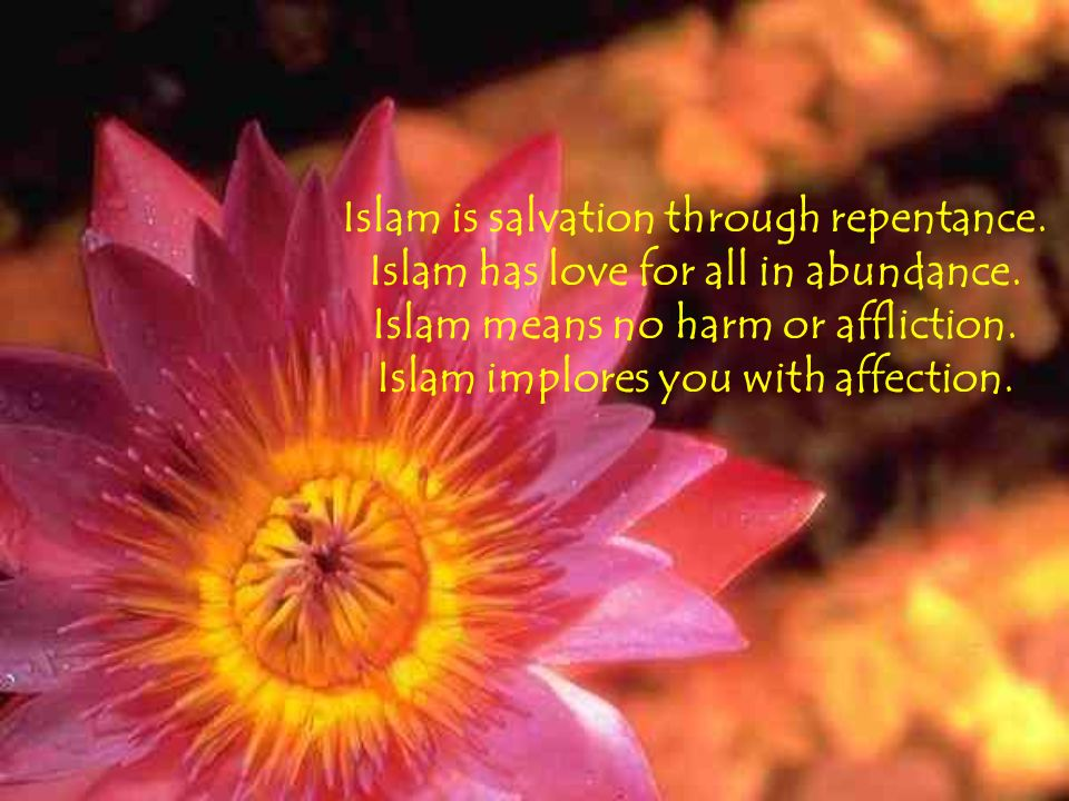 Islam is salvation through repentance. Islam has love for all in abundance.